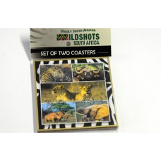 Set of 2 coasters - Big 5 South Africa